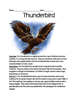 Thunderbird - Cryptid Native American mythology - large bird lesson facts