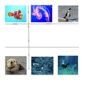 TicTacToe activity for an Aquarium Field Trip