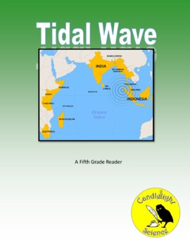 Tidal Wave - Science Informational Text Reading Passage