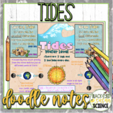 Tides Doodle Notes & Understanding Checkpoint (Quiz) NGSS Aligned