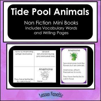 Tide Pool Animals Non Fiction Mini Books