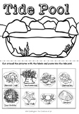 Tide Pool Cut and Paste Activity
