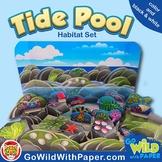 Tide Pool Habitat Craft Activity | Rock Pool Diorama Project