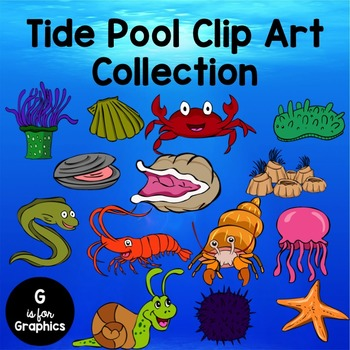 Tide Pool Clip Art