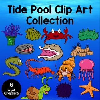Tide Pool Clip Art