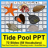Tide Pools PowerPoint - 3 Reading Levels + 53 Illustrated Vocabulary Slides