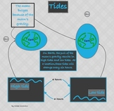 Tides Infographic and Quiz