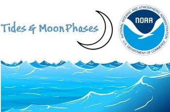 Tides and Moon Phase Graph Activity using NOAA