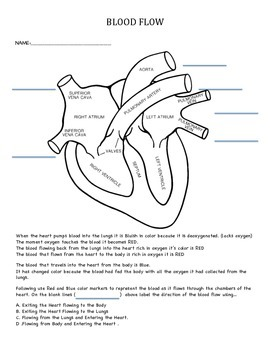 Tier 2/3 Intervention Activity  Body - Heart - Blood Flow