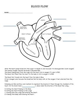 Tier 2/3 Intervention Activity  Body - Heart - Blood Flow