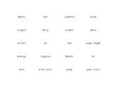 Tier II Vocabulary bundle Synonym/Antonym Matching games (