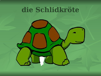Tiere (Animals in German) PowerPoint