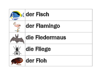 Tiere (Animals in German) word wall