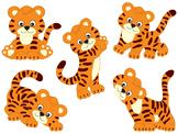 Tiger Clipart - Digital Vector Safari, African, Animal, Ti