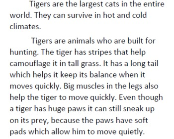 Tiger Informational Text and Questions