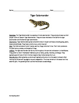 Tiger Salamander - Review Article Questions Vocabulary Wor