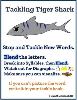 Tackling Tiger Shark Posters and Tackle Book