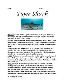 Tiger Shark - review article lesson - information facts review questions
