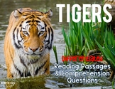 Tigers Informational & Nonfiction Text w/ Questions