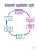 Time Management & Homework Organization
