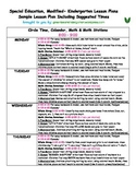 Kindergarten Special Ed FULL WEEK of Lesson Plans or Sub P