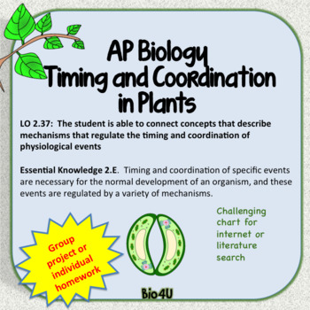 Timing and Coordination in Plants