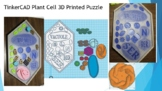 TinkerCAD Plant Cell 3D Printed Model Distance Learning