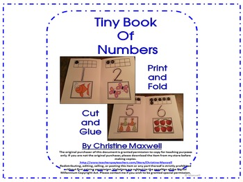 Tiny Book of Numbers, Counting, Writing and Ten Frames