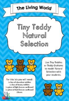 Tiny Teddy Graham Natural Selection Lab