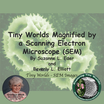 Tiny Worlds Magnified by a Scanning Electron Microscope -