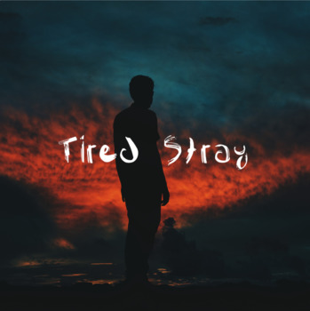 Tired Stray: Personal Narrative & Song on Migration, Place, & Homesickness