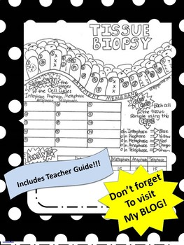 Tissue Biopsy for Mitosis--Activity Using Sketch Notes W/Teachers Guide