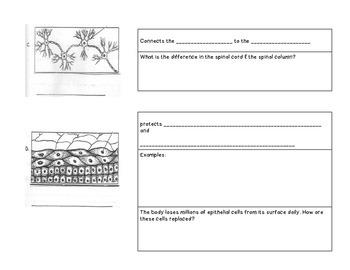 Tissue Notes
