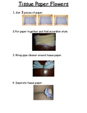 Tissue Paper Flowers Visual Instructions