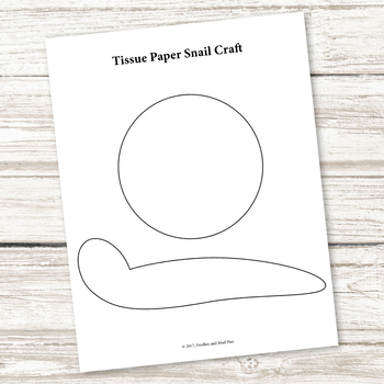graphic relating to Printable Tissue Paper named Tissue Paper Snail Craft (Spring and Summer season)