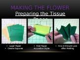 Tissue paper flower powerpoint tutorial