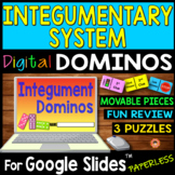 Integumentary System DIGITAL DOMINOS for Google Slides