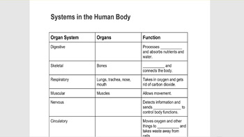 Tissues and Organs Anatomy Review and Assessment