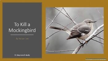 To Kill a Mockingbird 10 Day Novel Study