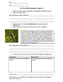 To Kill a Mockingbird: Chapter 10 Activity