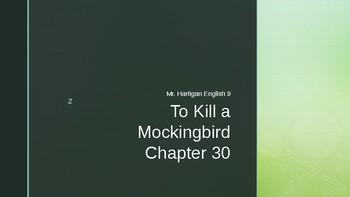 To Kill a Mockingbird Chapter 30 Visual Guide