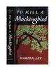 To Kill a Mockingbird Chapters 19-21 (Central Idea)