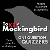To Kill a Mockingbird, Reading Accountability with Chapter-by-Chapter Quizzers