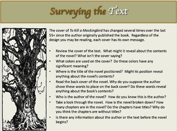 To Kill a Mockingbird Novel Study Unit~Includes Reproducible Graphic Organizers