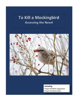 To Kill a Mockingbird Novel Assessment