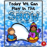 Today We Can Play In The Snow (A Sight Word Reader and Teacher Lap Book)