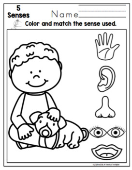 Toddler 5 Senses Printable