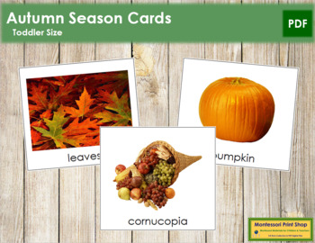 Autumn Season Cards  - Toddler
