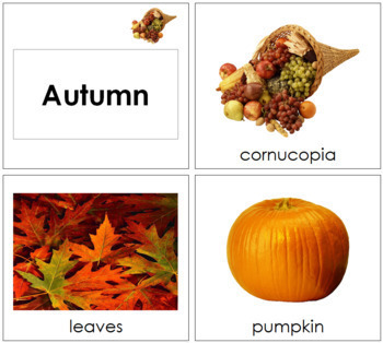 Autumn Season Cards  - Toddler