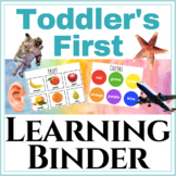 Toddler's First Learning Binder: Matching, letter sounds, numbers, + more!